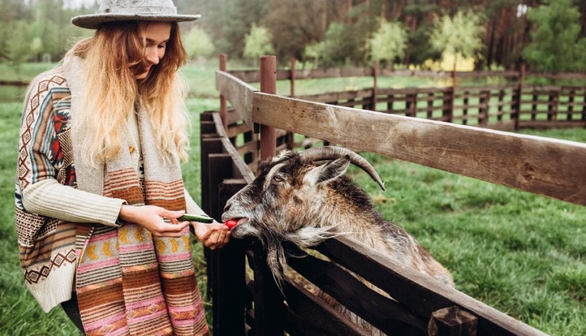 How best to enjoy a successful rural lifestyle